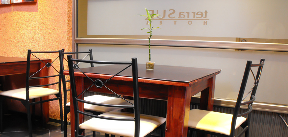 restaurant-terrasur-03